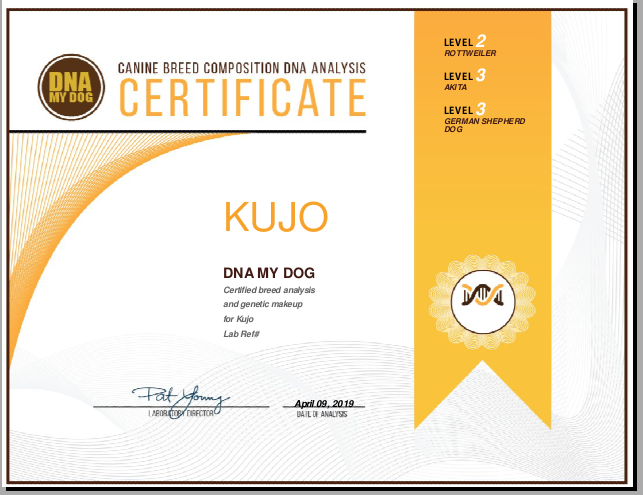 Easydna DNA My Dog Certificate